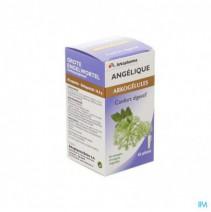 Arkocaps Engelwortel Plantaardig 45,Arkocaps Engel