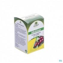 fytobell-allobiose-caps-50